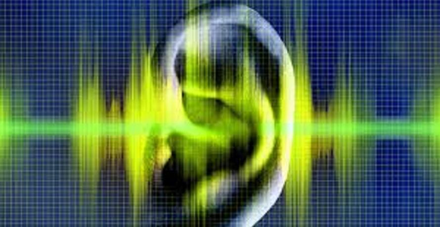 הרְכָּבת הפסקול הארגוני: אפקט הקול בהנעה לתרומה